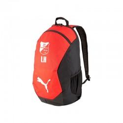 teamFINAL 21 Backpack Puma...
